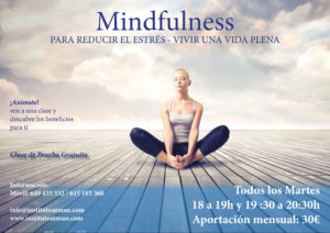 Mindfulness versión primavera 2016